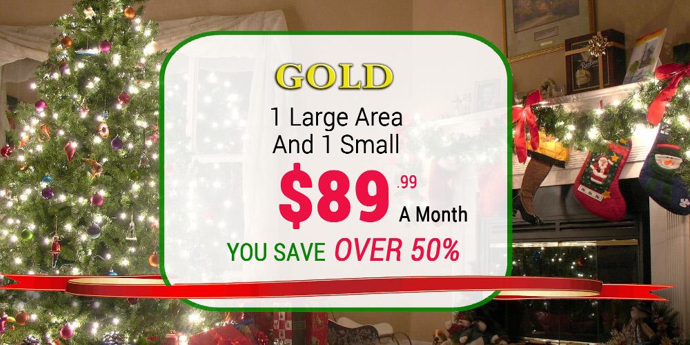 December-2014-Gold-Button