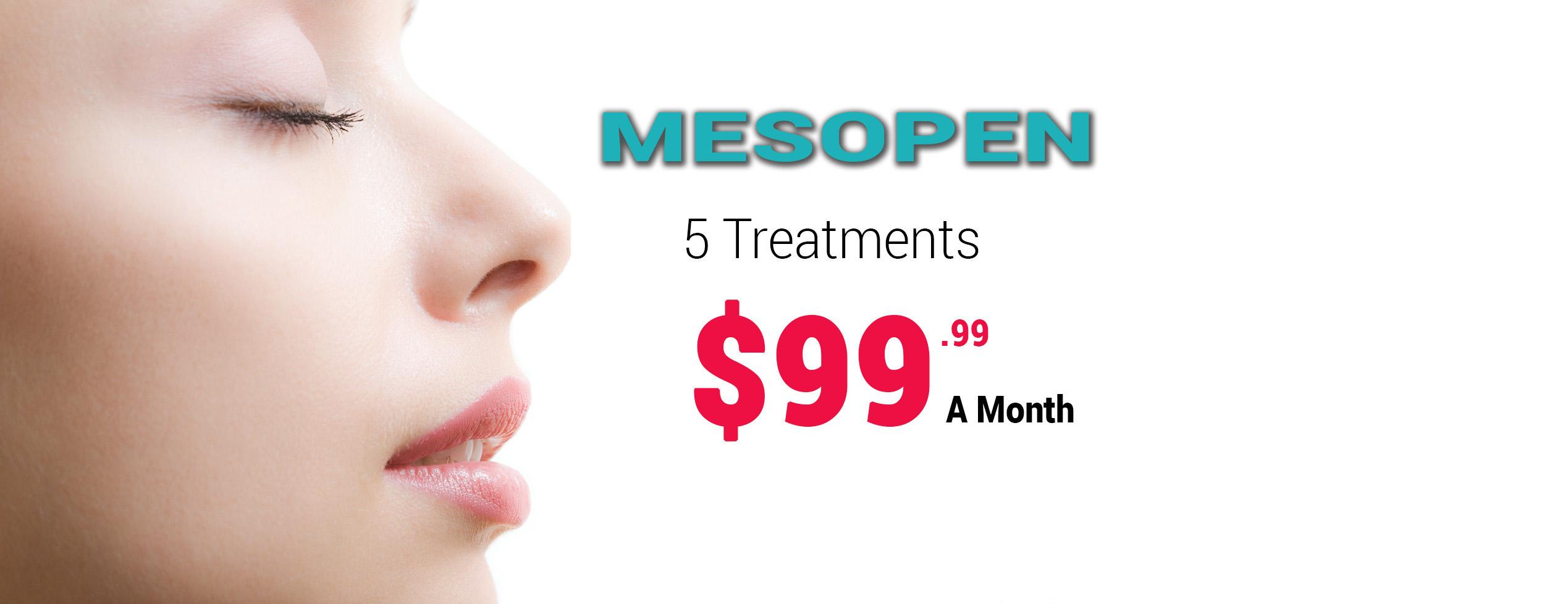 December-2014-Mesopen-3